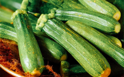 So You Don't Like Zucchini? These Recipes Will Change Your Mind!