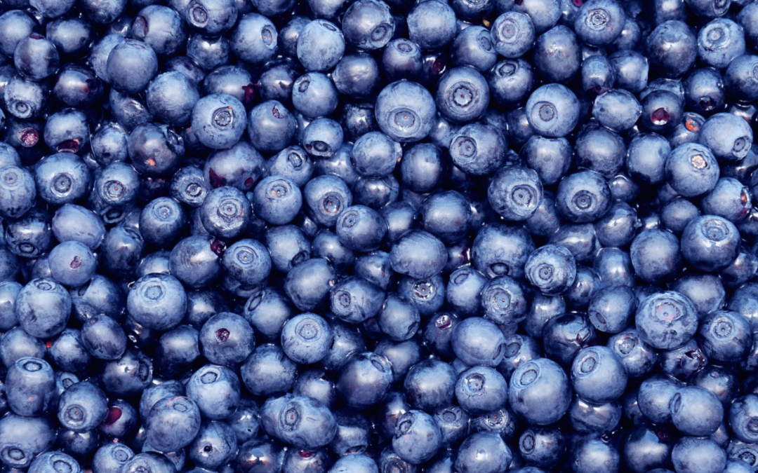 My Favorite Blueberry Recipes Of All Time