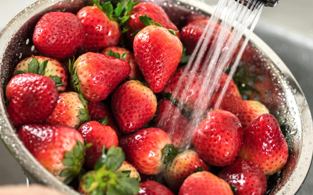 fresh produce header